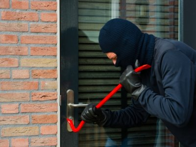 burgalor, thief, crime, crimes, police, break in