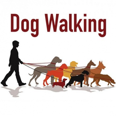 Dog Walking 03a