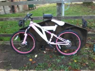 Found Bicycle