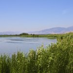 Israel_Hula Valley