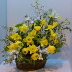 Spring Flower Display 1